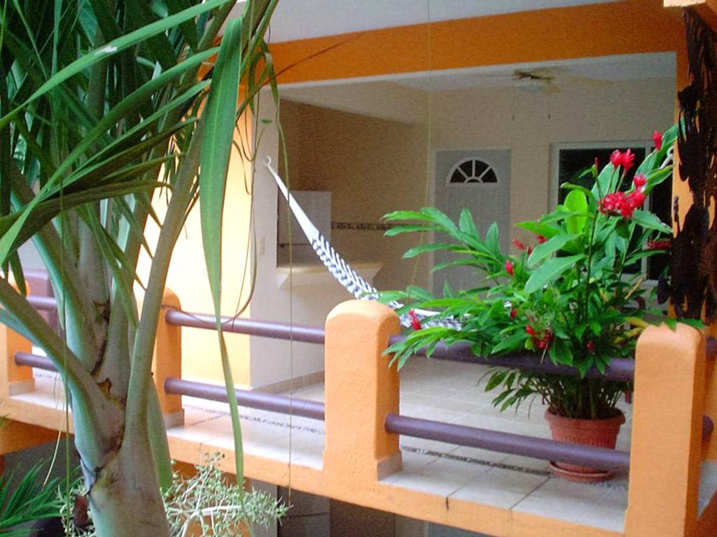 Hospedaje Ixtapa Zihuatanejo Arecas Suites
